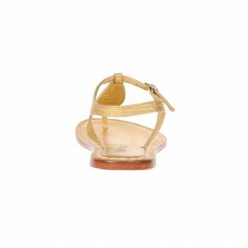 Bernardo Kvinnor Mistral / Dimensionen Sandal Guld