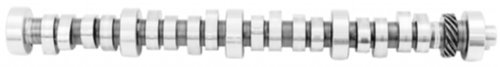 Ford Racing Performance Parts M6250-B303 302 HYD ROLLER CAMSHAFT -