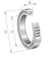 SL185010-A INA CYLINDRICAL ROLLER BEARING