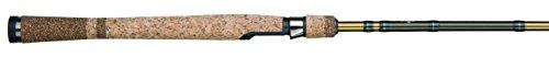 Salmon Rod (Fenwick Eagle Salmon/Steelhead Spin)