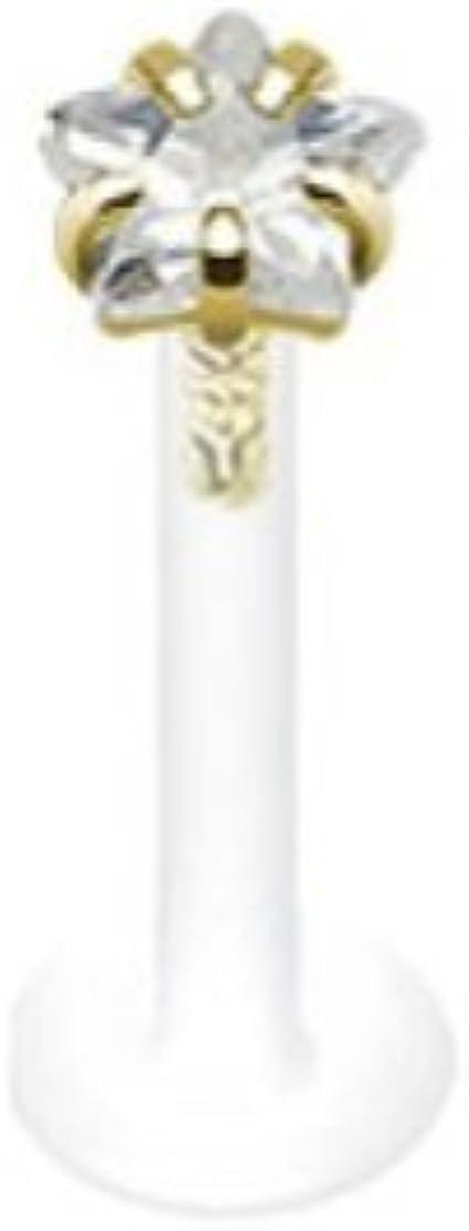 Paula & Fritz Piercing de labios Bioflex con 14 Quilates Oro Cabeza y Zirkoniastern