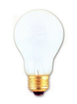 Incandescent Light Bulb, Long Life A-19, 20,000 Hours, 100 Watt, Frosted