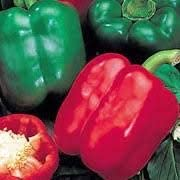 Grow Your Own Now! Mixed Plant Selection Tomatoes and Sweet Peppers 12