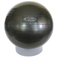 Fitball Wedge (FitBALL Stability Exercise Ball, 65cm - Black - No Pump- Clinical Non-retail packaging)