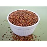 The Sprout House Certified Organic Sprouting Seeds Red Clover 1 lb