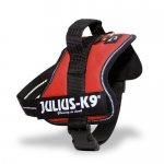 Julius-K9 Powerharness With Reflective Julius-K9 Labels, Size Mini Red – Dog Harness – Custom labels available – soft yet very strong, renowned for the comfort and fit – easy on – no pull harness – 14 colors in 8 fully adjustable sizes for the perfect fit – widely used in Europe by K9 atheletes, service dogs, working dogs and security dogs – highly reflective piping for safety!, My Pet Supplies