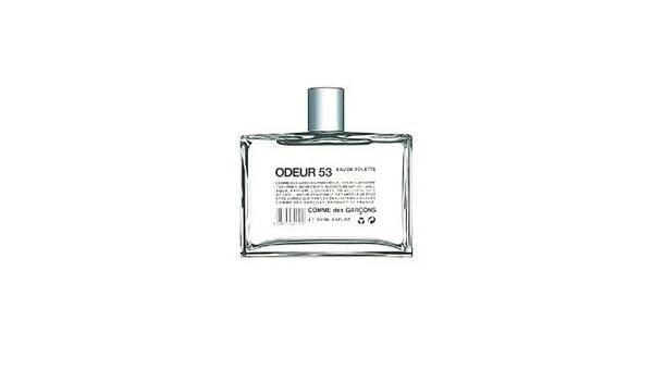 Odeur 53 por las Comme Des Garcons con tapa para la aleación De las mujeres Colonia De imitación del aerosol Toilette 200 mL: Amazon.es: Belleza