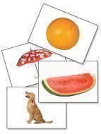 Photo Funtastic Language Development Cards (385 Basic Vocabulary Picture (Picture Noun Cards)