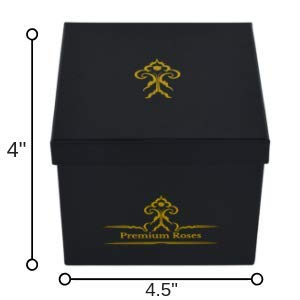 Premium Roses | Model Posh | Real Roses That Last 365 Days | Roses in a Box| Fresh Flowers (Black Box, Small) by Premium Roses (Image #5)