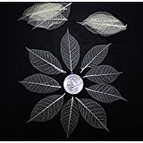 50 Mini Skeleton Leaves Rubber Tree Natural color Scrapbook Craft Card Wedding