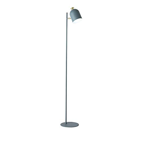 (FL-63458,Nordic Simple Floor Lamp Metal Body,Adjustable Arc Iron Stand Task Light for Reading Study Studio Office, Macaron Blue 61.02