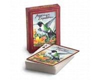 Wildlife Explorer Costume (Wildlife Playing Cards (Ruby Throated Hummingbird) by American Expedition)