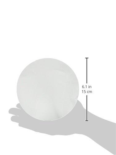 185 mm Max Volume 310 ml//m Pack of 100 Whatman 4716E40PK 1440185 Grade 40 Quantitative Filter Paper Ashless Filter Circles