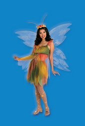 [Women's Costume: Felicity the Woodland Fairy-One Size PROD-ID : 559085] (Felicity The Woodland Fairy Costumes)