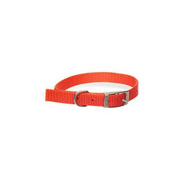 Aspen PET Products 15356 12/x5/8 Nylon Red Collar, My Pet Supplies