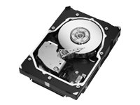 (Seagate 146GB SCSI 15K RPM U320 SCA-2 Hard drive)