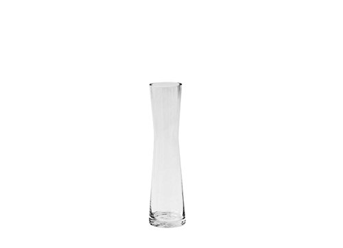 Caterpillar Small Clear Glass Bud Vase For Short Flowers Unique