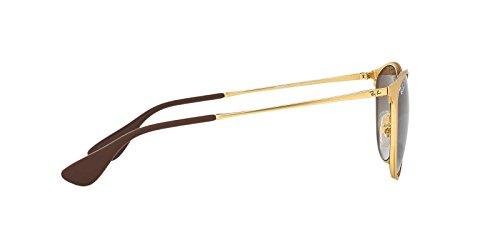Ray-Ban Womens Erika Metal Sunglasses (RB3539) Gold Matte/Brown Metal - Polarized - 54mm