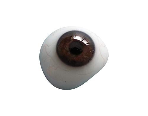 - Eyeball Realistic & Natural Art & Craft Eyes (22MM, Dark Brown)