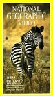 National Geographic: Zebra Patterns in Grass VHS