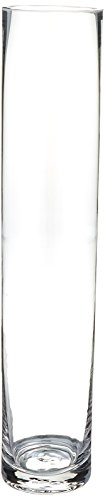 - WGV Clear Cylinder Glass Vase, 3 by 16-Inch