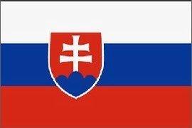 Slovakia Flag Polyester 3 ft. x 5 ft.