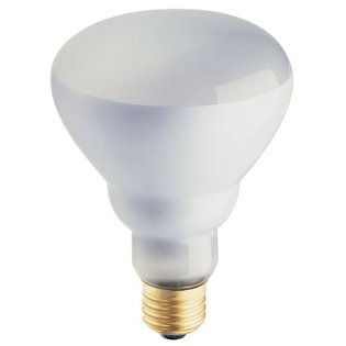 Phillips 408662 Soft White 65-Watt BR30 Indoor Flood Light Bulb, 4-Pack (Light 65w Bulb)