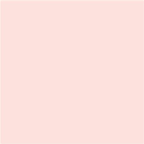 (Adorama Seamless Background Paper, 53