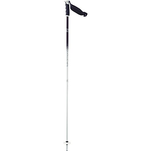 Salomon Angel S3 Ski Pole - Women's