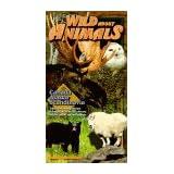 Wild About Animals: Canada Alaska & Scandinavia
