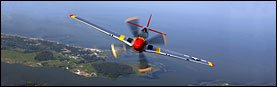 P-51 Mustang Rear Window Graphic