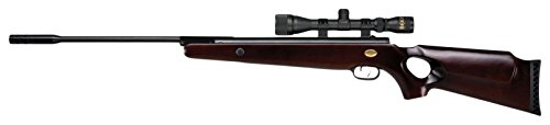 Beeman 1192 X2 Dual Caliber Bear Claw Air Rifle with 3-9 x 32 mm (Best Rifle For Bear)