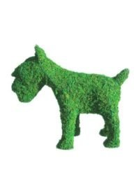(Schnauzer 18 inches high wide Indoor Outdoor Hand Wired Animal w/Moss Topiary Frame Structure)
