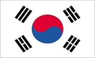 product image for 5x8' South Korea Nylon Flag