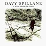 Place Among the Stones by Spillane, Davy (1996-03-26)