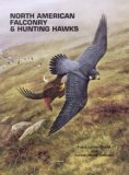 Read Online North American Falconry & Hunting Hawks ebook