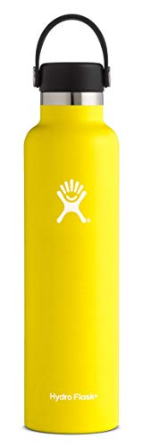 Hydro Flask 24 oz Water Bottle | Stainless Steel & Vacuum Insulated | Standard Mouth with Leak Proof Flex Cap | Lemon ()