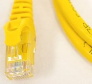 Network Cables Online-Yellow 50ft