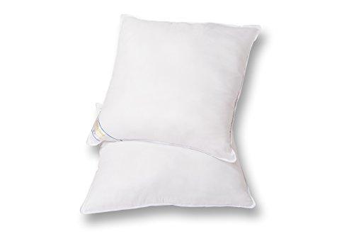 Set of 2 Beauty Sleep Premium Hypoallergenic Down Alternative Euro Square Pillow Insert (26 x 26)