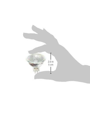 FNV60//FG JR12V-50W//FL60// ULTRA TITAN 18,000 Hour MR16 Ultraline Titan 50 Watt 12 Volt Wide Flood Halogen Light Bulb Ushio 1003559 18,000 Hour Long Life Bulbconnection BC3085