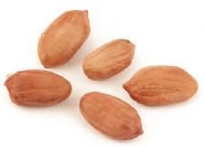 Peanuts Virginia Raw -55Lbs by Dylmine Health (Image #2)