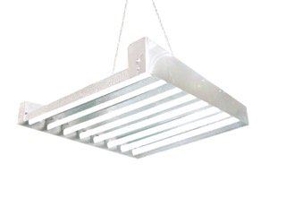 T5 HO Grow Light - 2 FT 8 Lamps - DL8208 Fluorescent Hydroponic Indoor Fixture Bloom Veg Daisy Chain with Bulbs