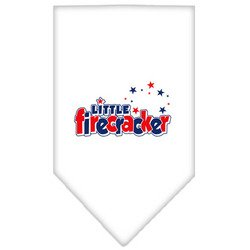 Little Firecracker Screen Print Bandana White Large by Leadoff