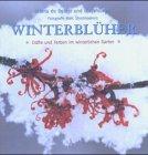 Winterblüher: Düfte und Farben im winterlichen Garten