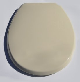 Swell Champagne Buxton Plastic Toilet Seat Ibusinesslaw Wood Chair Design Ideas Ibusinesslaworg