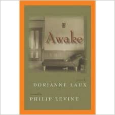 Book Awake (New poets of America series)