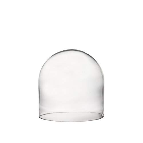 CYS EXCEL Glass Dome, Showcase Piece, Decorative Display Case, Cloche Bell Jar Terrarium, Black Wood Base, Pack of 1