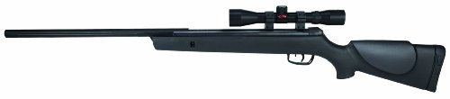 Gamo Big Cat 1250 Air Rifle with Scope, 0.177 Caliber (6110065654 )