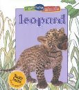 img - for Leopard (Busy Baby Animals) book / textbook / text book
