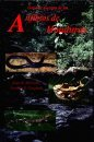 Guía de Campo de los Anfibios de Honduras, McCranie, James R. and Castañeda, Franklin E., 193287111X